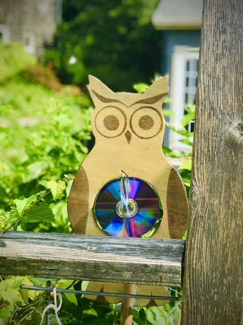 Wood stained Completed DIY Garden Owl
