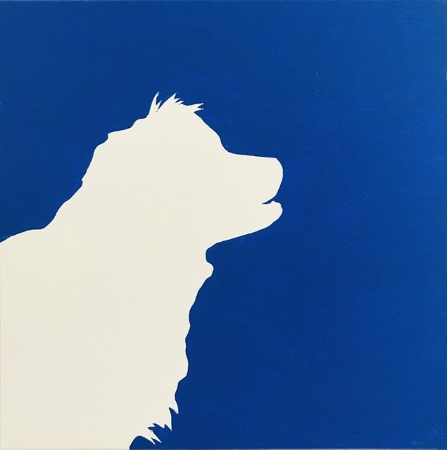Fuzzy dog on dark blue background